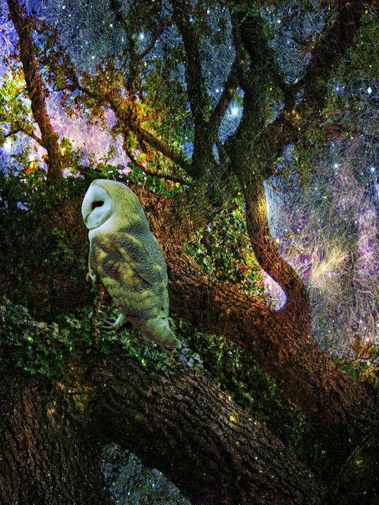 Oak Magic - Heathers Art