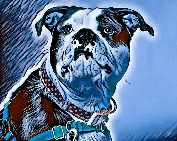 Dogs 5. - Alexandra Luiza Dahl