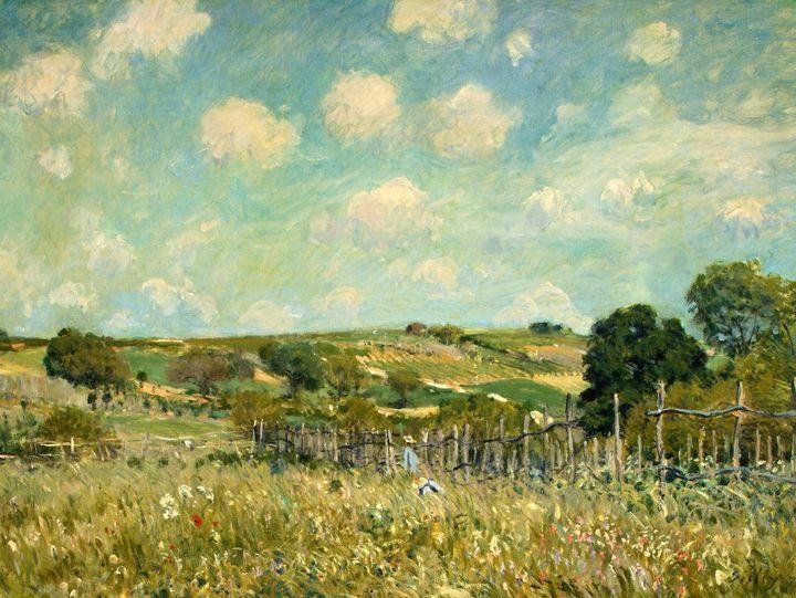 Alfred Sisley - Meadow, 1875 - Alexandra Luiza Dahl