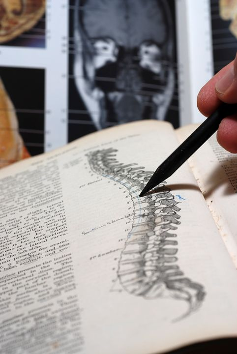 An open Anatomy text book - PhotoStock-Israel