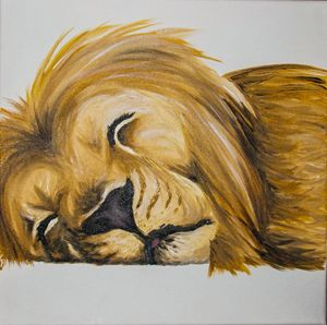 sleeping lion