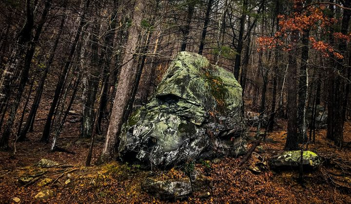Boulder in Woods - Kendall Tabor Jr.
