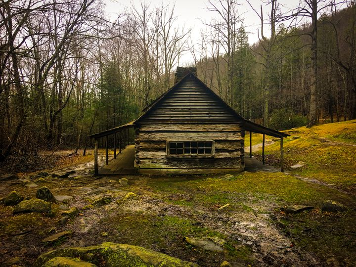 Cabin in Woods - Kendall Tabor Jr.