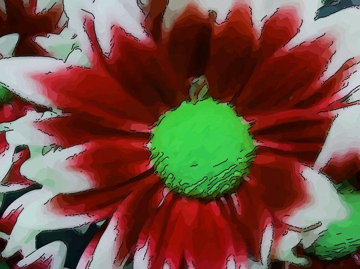 Daisy flower - Red - CLA