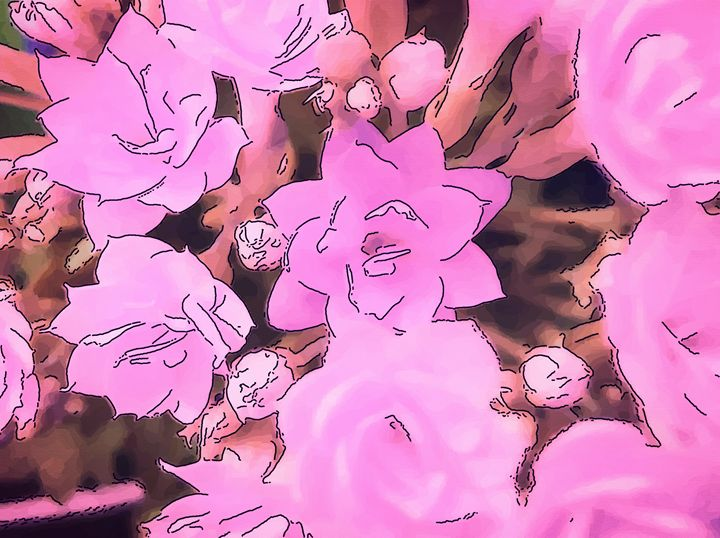Pink flower of kalanchoe - CLA