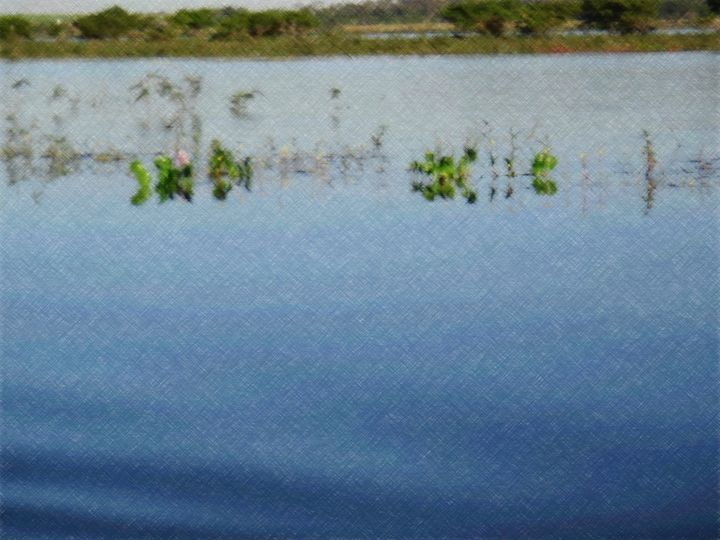 River - CLA