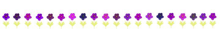 African violet - CLA
