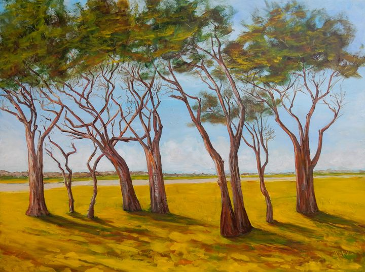 Trees at Fort Fisher - Joy Parks Coats Art