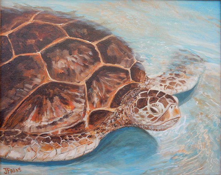 Sea Turtle - Joy Parks Coats Art