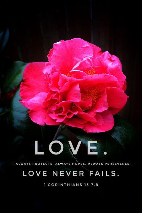 Love.Never.Fails - Chandra Lynn PhotoArt