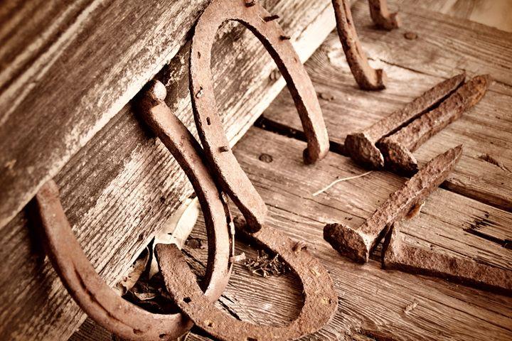 Horseshoe and Nails - Chandra Lynn PhotoArt