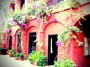 Goree Courtyard