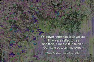 """""""We Never Know How High We Are."""""""