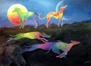 50 Shades of Greyhounds
