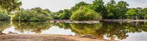 Hollow Ponds Panoramic