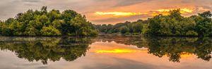 Epping Forest Sunrise