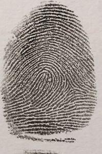 Fingerprint - Infallible evidence