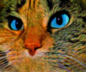 Cat Portrait #720 William Kaluta Art
