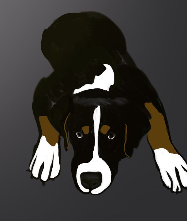 Swiss Mountain Dog Puppy Original Ar - KJHART