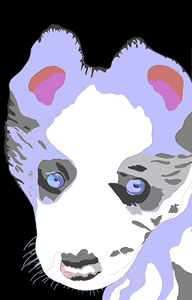 Blue Merle Puppy Art