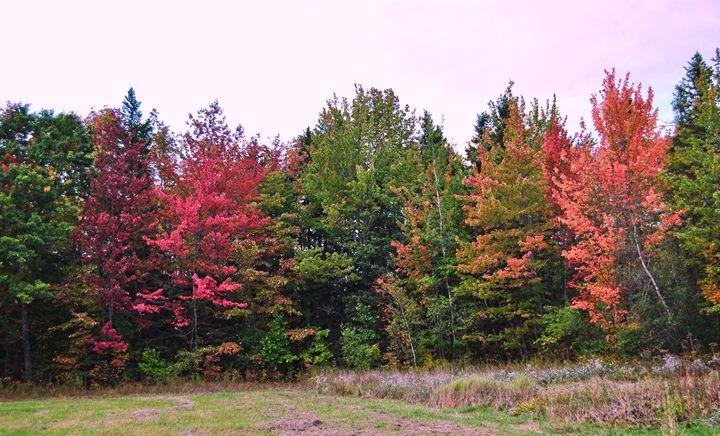 The Fall Season Begins - Mistyck Moon Creations Gallery