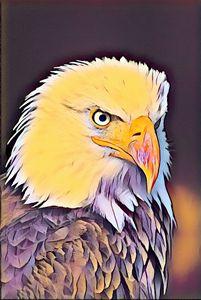 Eagle Modern Vintage Style Print