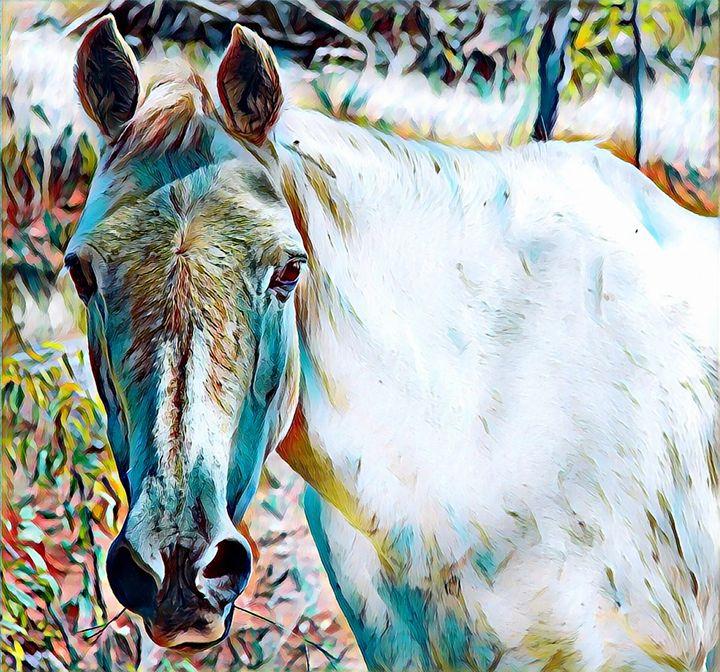 White Horse Portrait - Rogue Art - Rogue Art