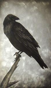 The Raven 1