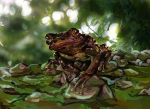 Frog Still Portrait