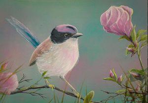 The Wren and the Desert Rose - Gregory J Farrugia