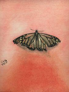 Butterfly - Calvin Wayne Robinson