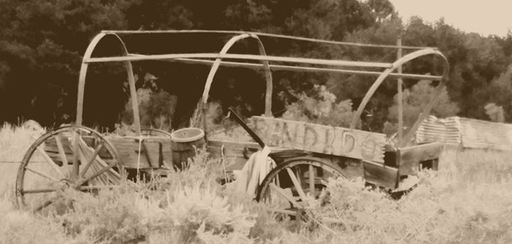 Old wagon on the old west - HUNTERPC1