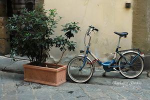 Italian Blue Bike