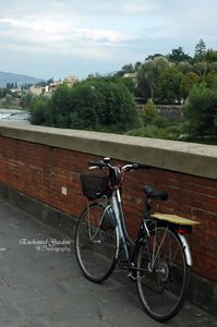Italian Bike by Brick Wall