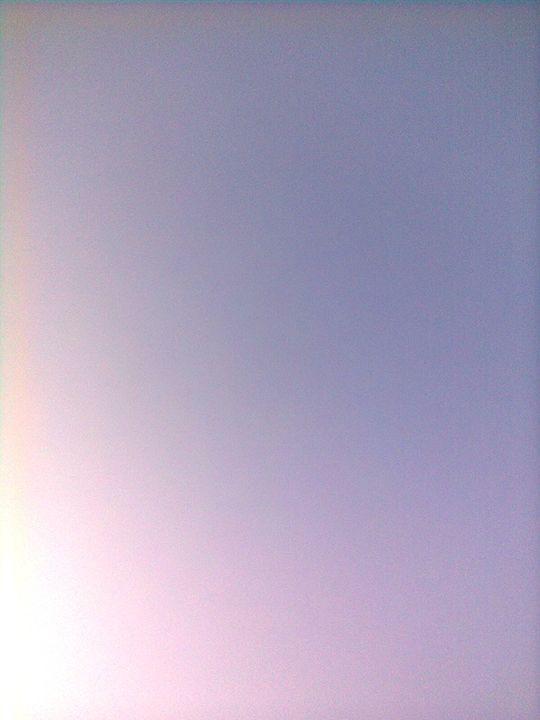 day sky - Rose