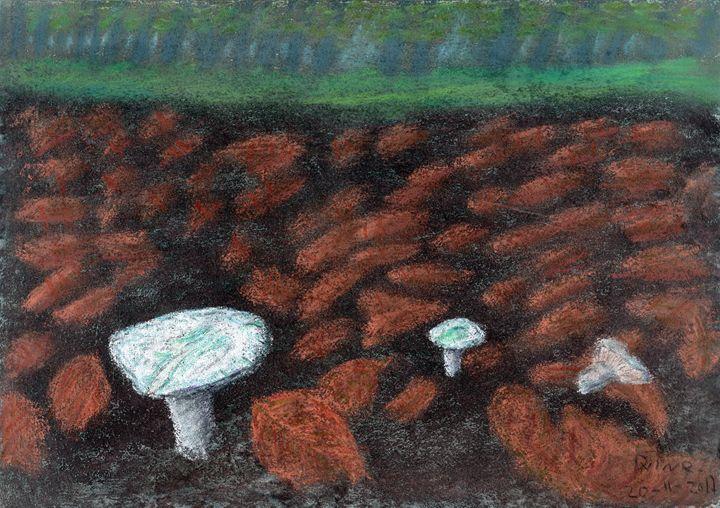 Forest Floor Mushrooms - pastel - Darkvine Art