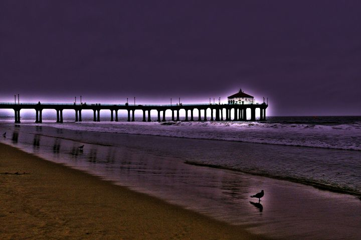 Purple Dawn - Omura Photo Gallery