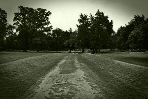 Jamestown Dirt Road