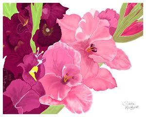 August, Gladiolus