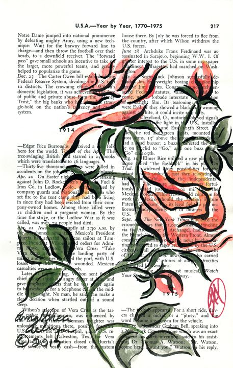 Roses - Aelwyn Studios