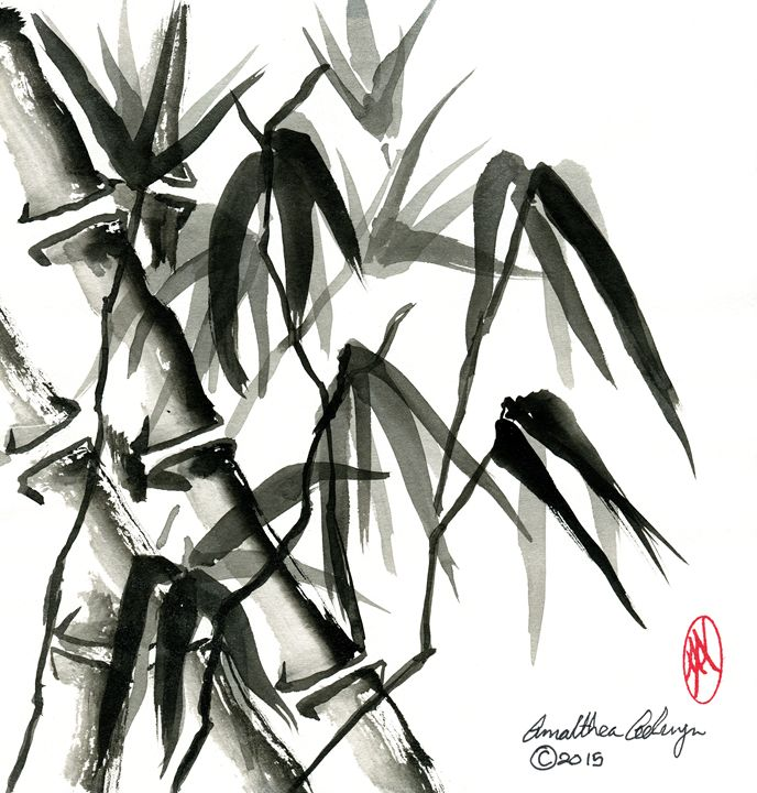 Bamboo - Aelwyn Studios