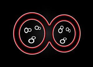 Infinity Symbol - Red Optic
