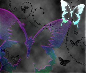 Satin Butterflies