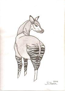 Okapi Original