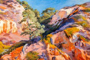 Sandstone Canyon at Torrey Pines