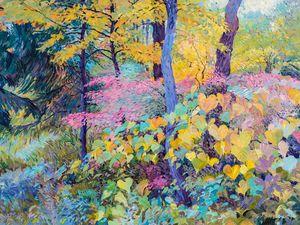 Fall in Lyman Woods