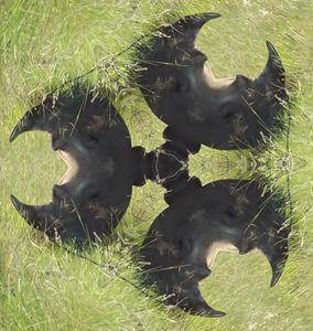 Kaleidoscope rhino head