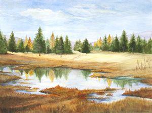 Montana headwaters