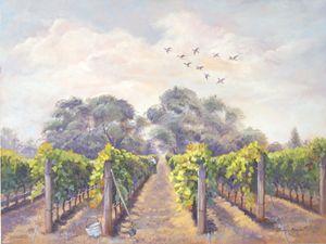 Balmy day vineyard