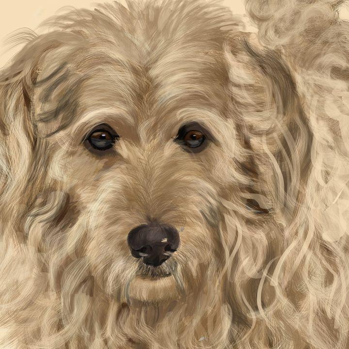 Goldendoodle - Dogone Art